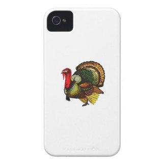 The Birdbrain Case-Mate iPhone 4 Cases
