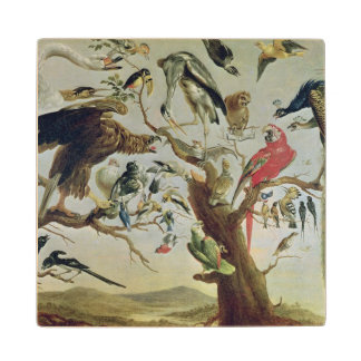 The Bird's Concert Maple Wood Coaster