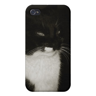 The black cat iPhone 4/4S case
