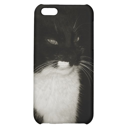 The black cat cover for iPhone 5C