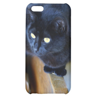 The black cat with gold eyes iPhone 5C cover