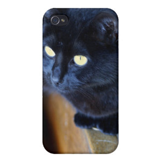 The black cat with gold eyes covers for iPhone 4