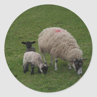 The Black Sheep Classic Round Sticker