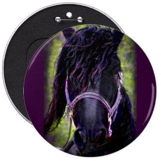 The Black Stallion Pins