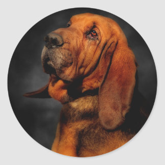 The Bloodhound Classic Round Sticker