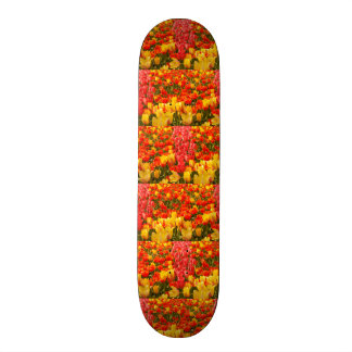 the blossoming of tulips in a park on skateboard