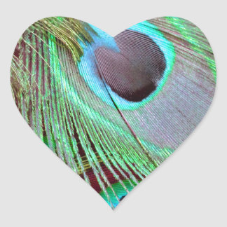The Blue Eye peacock flowing feather. Heart Sticker