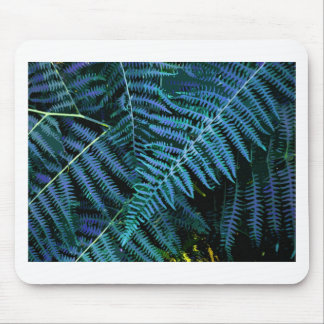 THE BLUE FERN MOUSE PAD