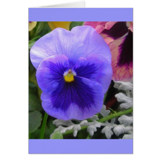The Blue Pansy Note Card