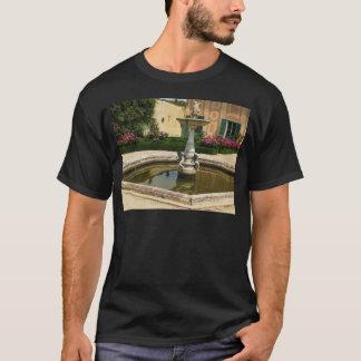 The Boboli Gardens, Florence Italy T-Shirt