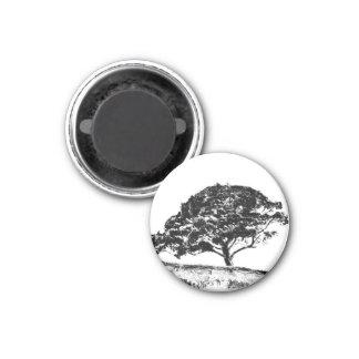 The Bonaventure Pine 3 Cm Round Magnet