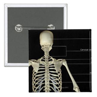 The bones of the upper body 15 cm square badge