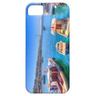 The Bosphorus Istanbul iPhone 5 Case
