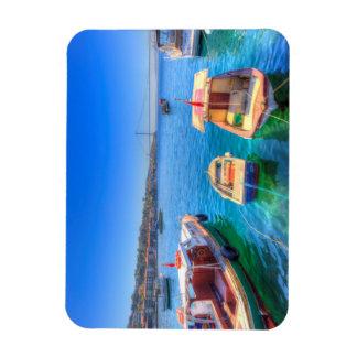 The Bosphorus Istanbul Magnet