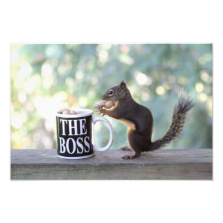 """The Boss"" Squirrel Photographic Print"