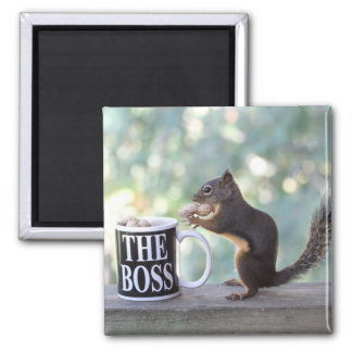 """The Boss"" Squirrel Square Magnet"