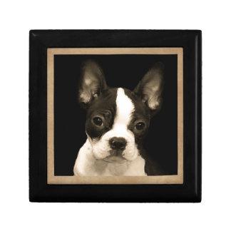 The Bouncy Boston Terrier Gift Box
