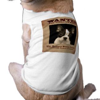 The Bouncy Boston Terrier Shirt