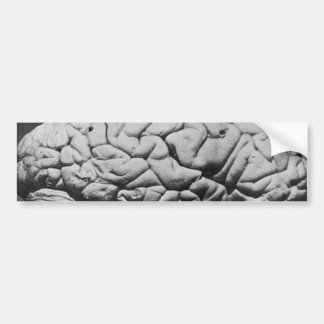 THE BRAIN OF CHARLES BABBAGE (1909) BUMPER STICKER