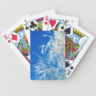 The branches of the tree during the winter bicycle playing cards