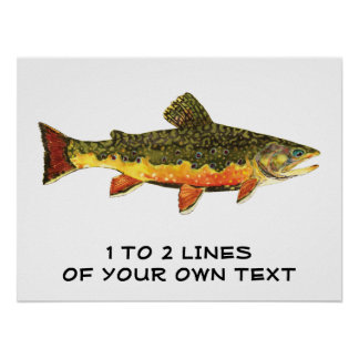 The Brook Trout Poster