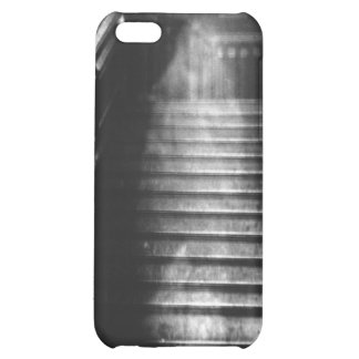 The Brown Lady iPhone 5C Cases
