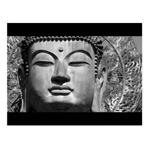 The Buddha Postcards