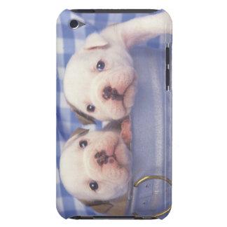 The Bulldog, often called the English Bulldog, iPod Touch Cover
