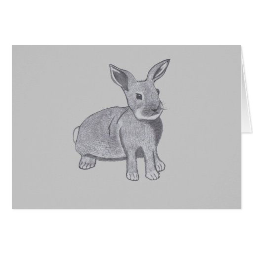 The Bunny Greeting Cards
