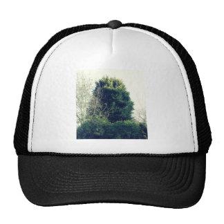 The bush cap