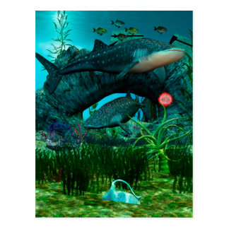 The Call Aquatic Life 3D Postcard
