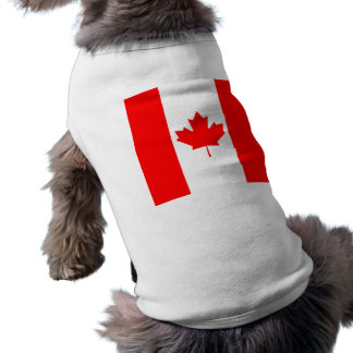 The Canadian Flag, Canada Shirt