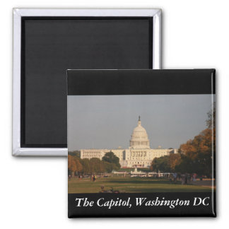 The Capitol, Washington DC Refrigerator Magnet