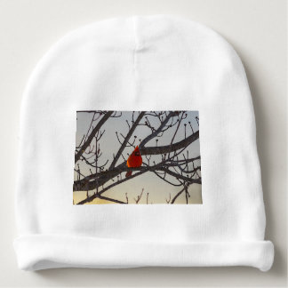 The Cardinal In The Morning Baby Beanie