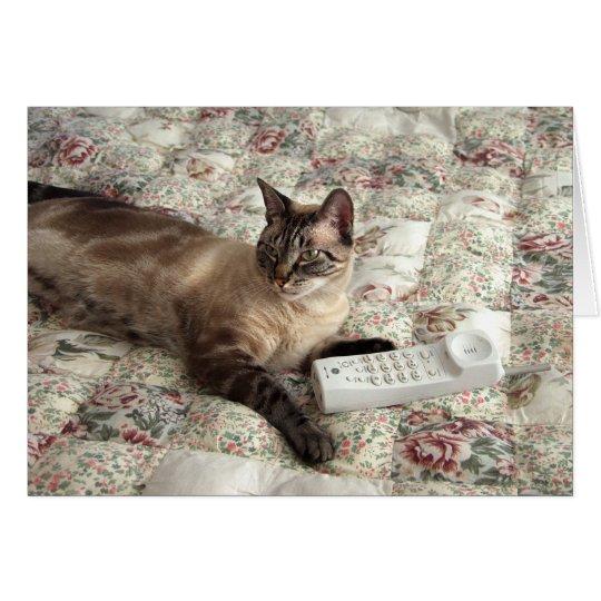 The Cat Calls Card