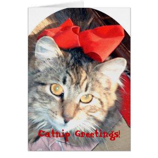 The Catnip Papers: Catnip Greetings! Card