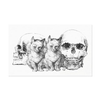 The Cats Are All They Were Canvas Print