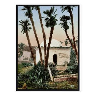 The cemetery, with chapel, Algiers, Algeria vintag Postcard