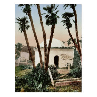 The cemetery, with chapel, Algiers, Algeria vintag Post Card