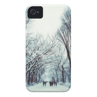 The Central Park Mall In Winter iPhone 4 Case