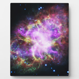 The Chandra X-ray in the Crab Nebula Plaque