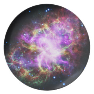 The Chandra X-ray in the Crab Nebula Plate