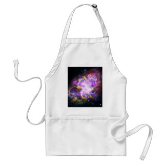 The Chandra X-ray in the Crab Nebula Standard Apron