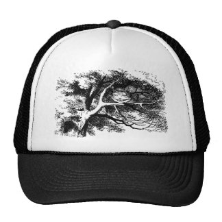 The Cheshire Cat Hat