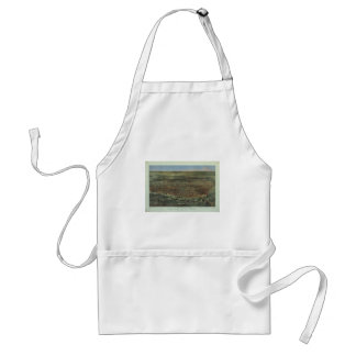 The City of St Louis Missouri from 1874 Aprons