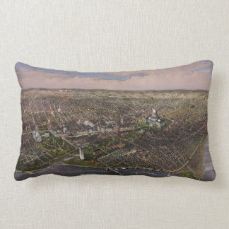 The City of Washington D.C. from 1880 Lumbar Pillow