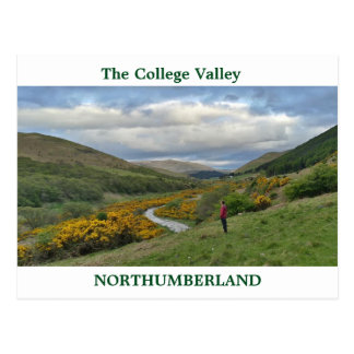 The college Valley Northumberland Postcard