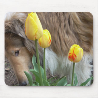 The Collie and The Tulips Mousepads