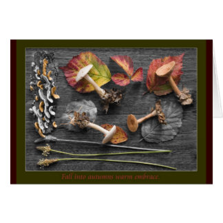 The colors of Fall Card