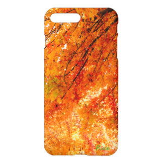 The Colors of Fall in Omaha Original Art iPhone 7 Plus Case